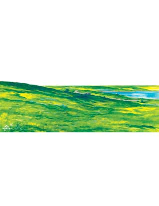 Meadow Background (Small)