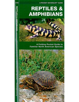 Pocket Guide - Reptiles & Amphibians