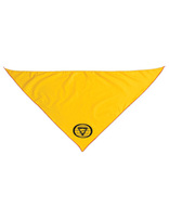 Teen Leadership Training Neckerchief - Red Edge