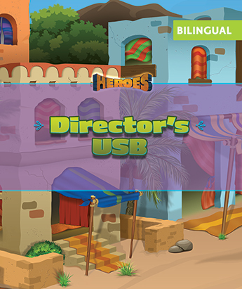 VBS 20 Director's Library USB - Eng