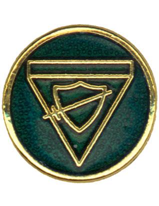 Explorer Class Pin