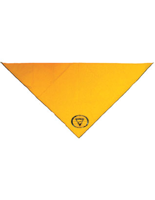 Pathfinder Neckerchief