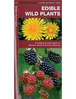 Pocket guide - Edible Wild Plants