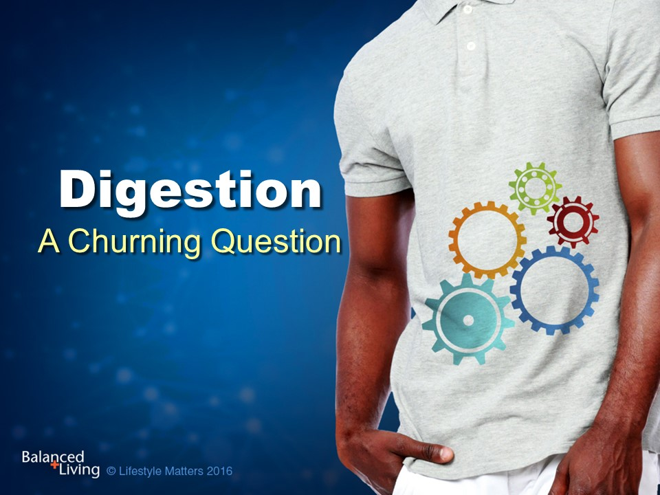 Digestion: A Churning Question - Balanced Living - PowerPoint Download