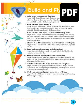 Builder Build and Fly Award - PDF Do
