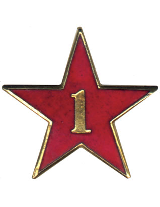 Service Star Pin - Year One