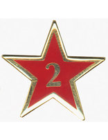 Service Star Pin - Year Two