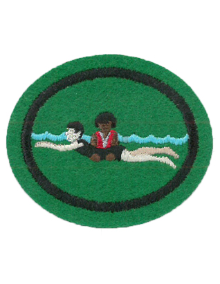Water Safety Instructor