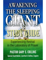 Awakening the Sleeping Giant - Study Guide