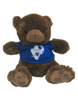 Pathfinder Teddy Bear