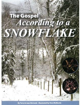 The Gospel According to a Snowflake