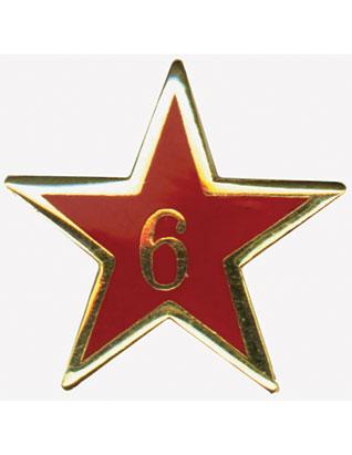 Service Star Pin - Year Six