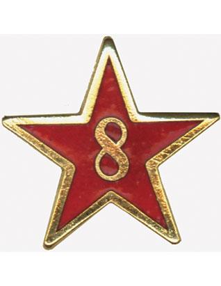 Service Star Pin - Year Eight