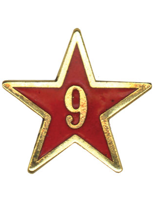 Estrella de Años de Servicio - Nueve Años