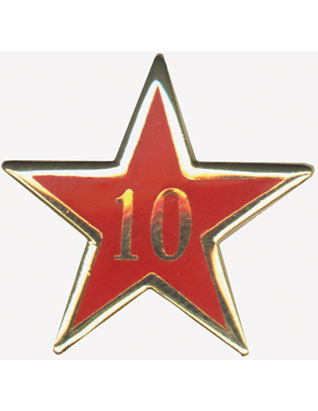 Service Star Pin - Year Ten