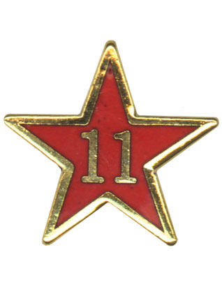 Service Star Pin - Year Eleven