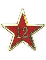 Service Star Pin - Year Twelve