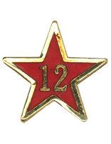 Estrella de Años de Servicio - Doce Años