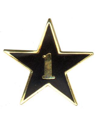 Teen Leadership Service Star Year 1