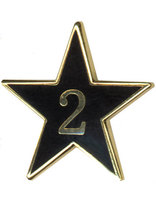 Teen Leadership Service Star Year 2