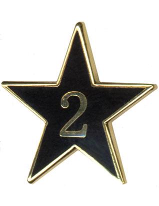 Teen Leadership Service Star Year 2