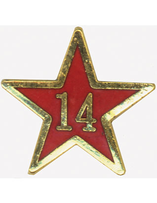 Service Star Pin - Year Fourteen