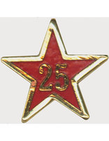 Service Star Pin - Year Twenty-Five