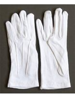 Pathfinder Parade Gloves