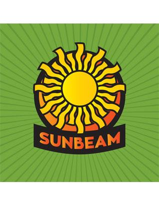 Adventurer Sunbeam Wall Banner