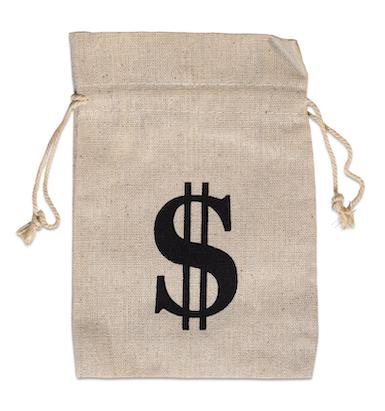 Canvas Money Bag