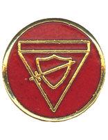 Companion Class Pin