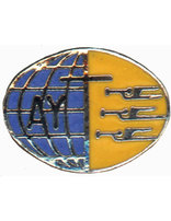 Adventist Youth Pin