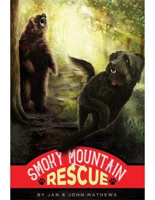 Smoky Mountain Rescue