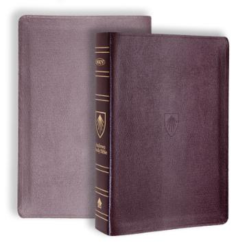 Andrews Study Bible-Genuine Burgundy