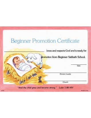 Beginner Promotion Certificate (10)