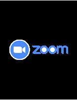 Zoom Room License