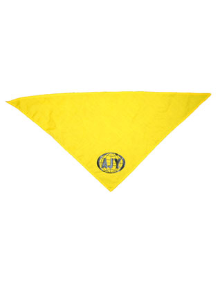 AJY Yellow Scarf Only