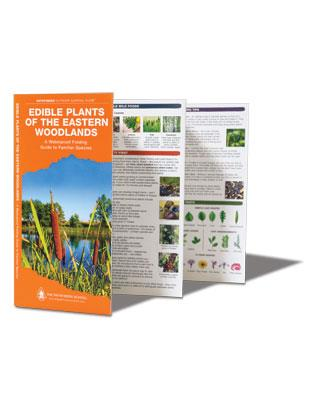Pocket Guide - Edible Plants of the Eastern Woodlands